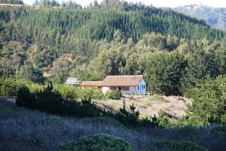 Playa y campo del Pacifico Sur - Cobquecura - House