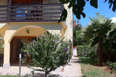One bedroom apartment with balcony Novigrad (A-11242-c) - Other