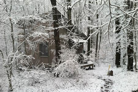 Artist's Nature Retreat Cottage - Spencer - Stuga