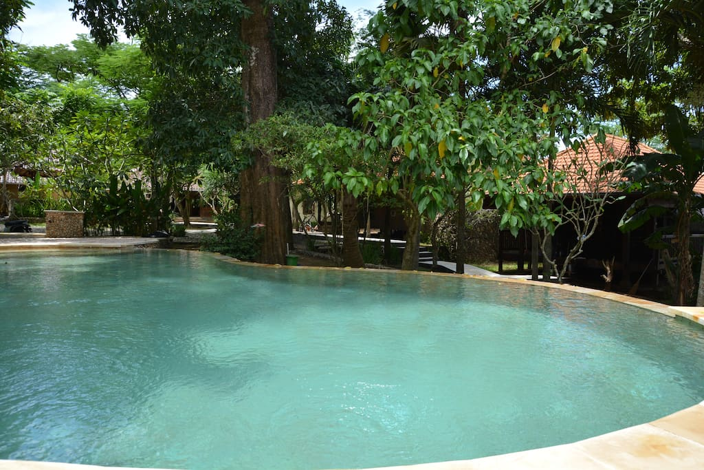Exclusive Bali Bungalows + House