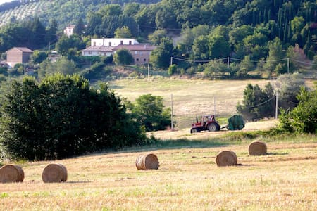 COUNTRY RETREAT FOR FOODIES - Assisi - Bed & Breakfast