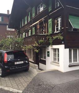 Sonniges und gemütliches Studio - Unterseen - Loft