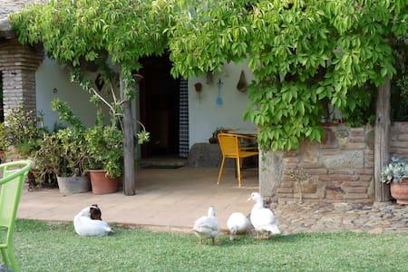 Casa del abuelo, 2 people. - El Pedroso