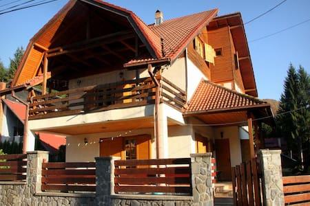 Sinaia 4 Bedroom Villa - Villa
