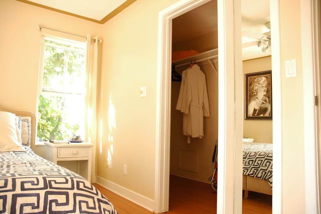 Large walk in closet, ample space for luggage and hanging clothes