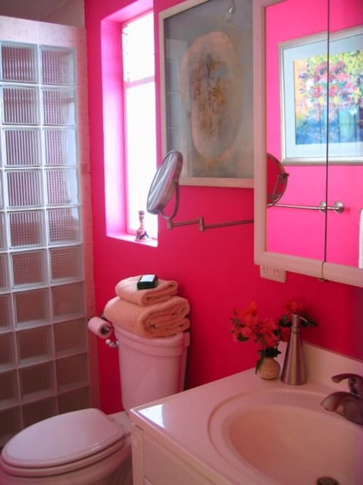 Rosa Mexicana Bathroom with Telephone Shower