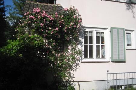 Gemütliches Apartment mit Terrasse - Kassel
