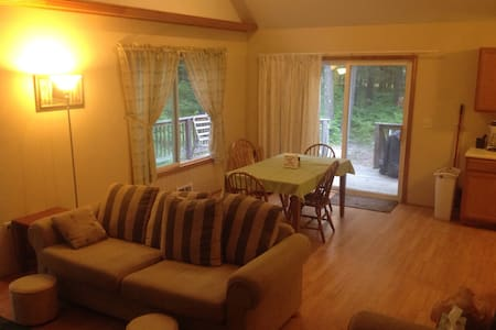 Pet friendly cottage at Higgins Lake - Ház