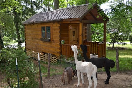 Log Cabin Tiny House - Cabin