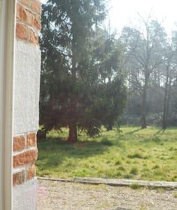 Maison en bordure de forêt - Ligny-le-Ribault