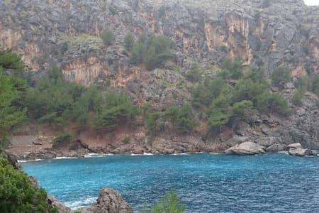Fincaurlaub auf Mallorca /4