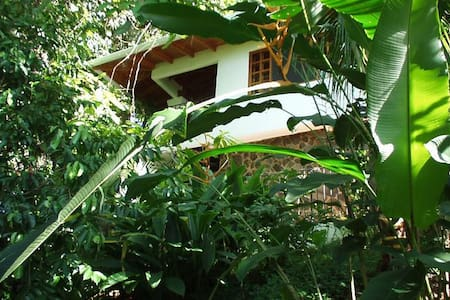 The Monkey House at Shelter From the Storm Villas - Dominical, Costa Rica  - Appartement