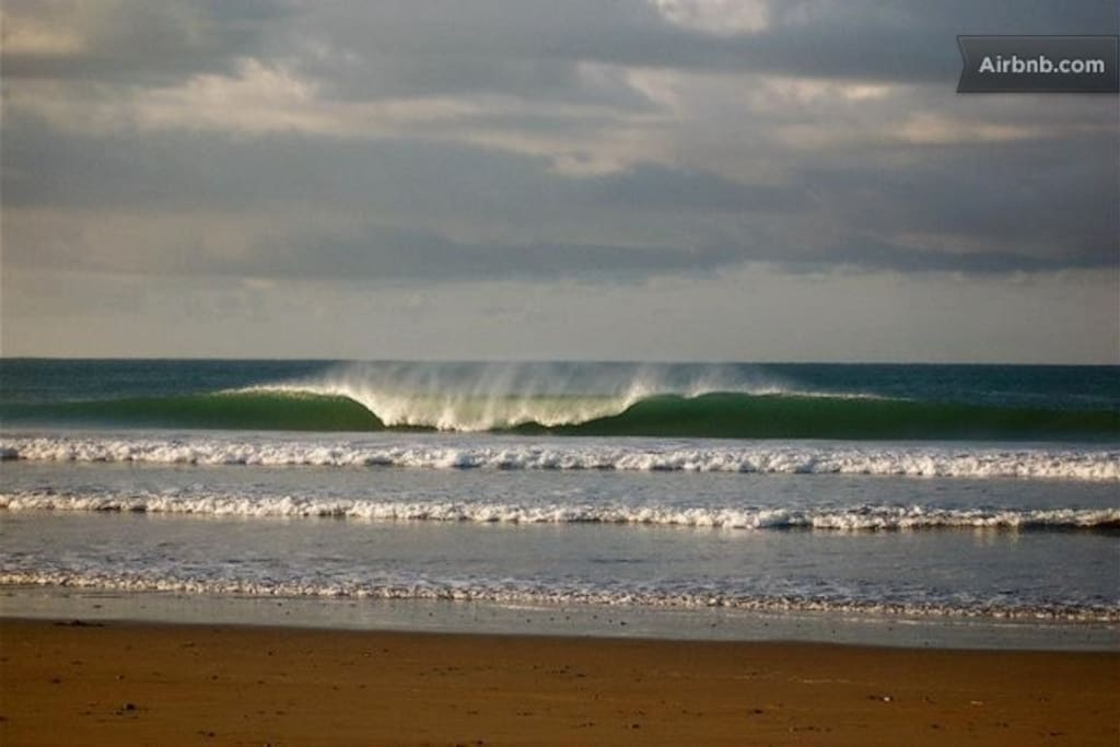 World class surf!
