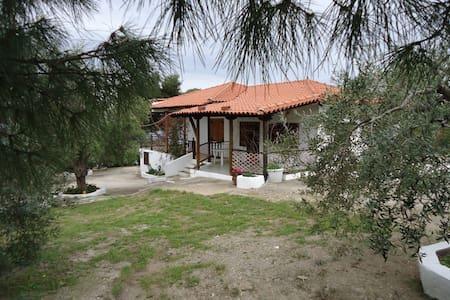 A wonderful Villa......!!! - Villa