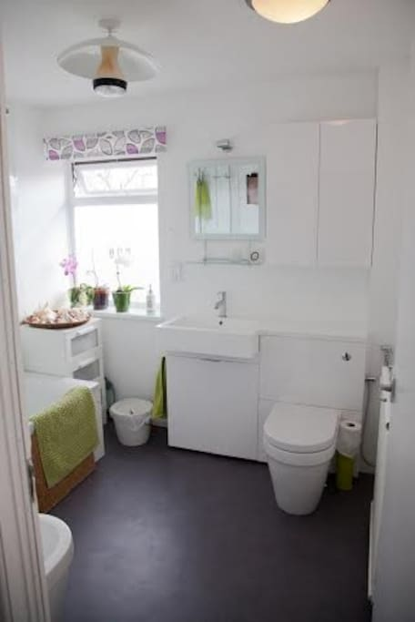 Big airy bathroom with shower and bidet