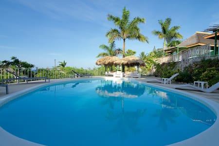 Luxury Villa With Private Cook free airport pickup - Villa