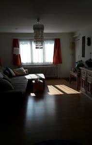 Gemütliche Wohnung im Zentrum - Heerbrugg - Apartament