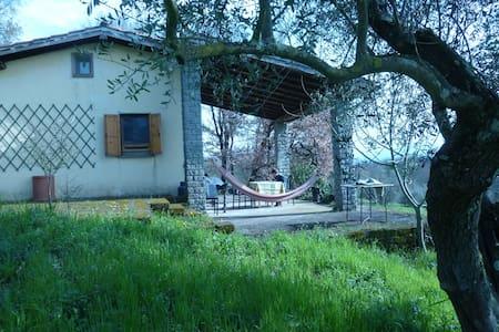 A small house in Tuscia (Lazio)