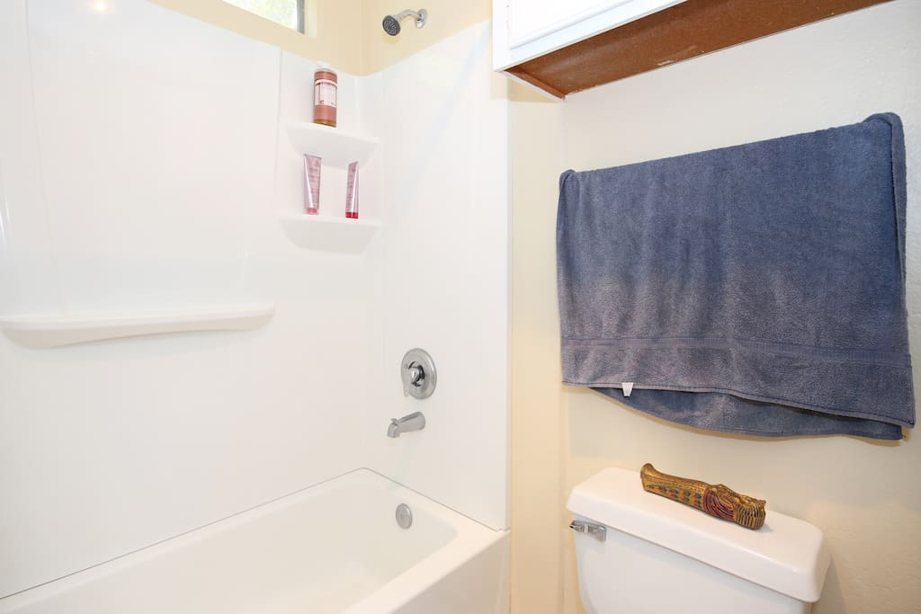 shower/tub separate from vanity area