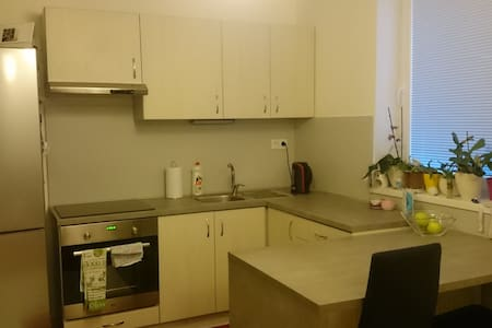 Nice apartment near the center of the City - Nitra