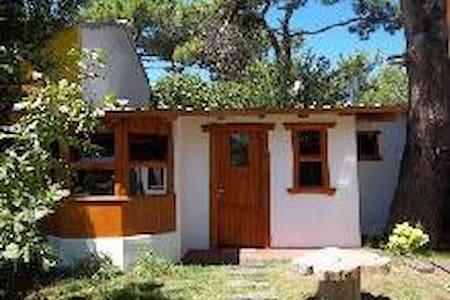 CABAÑA PINO ECOLOGICA MONOAMBIENTE - Villa Gesell - Chalet