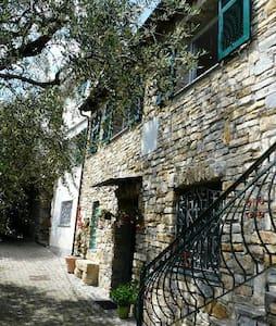 Apartment with garden Luciana 2 - Riva Faraldi - Wohnung