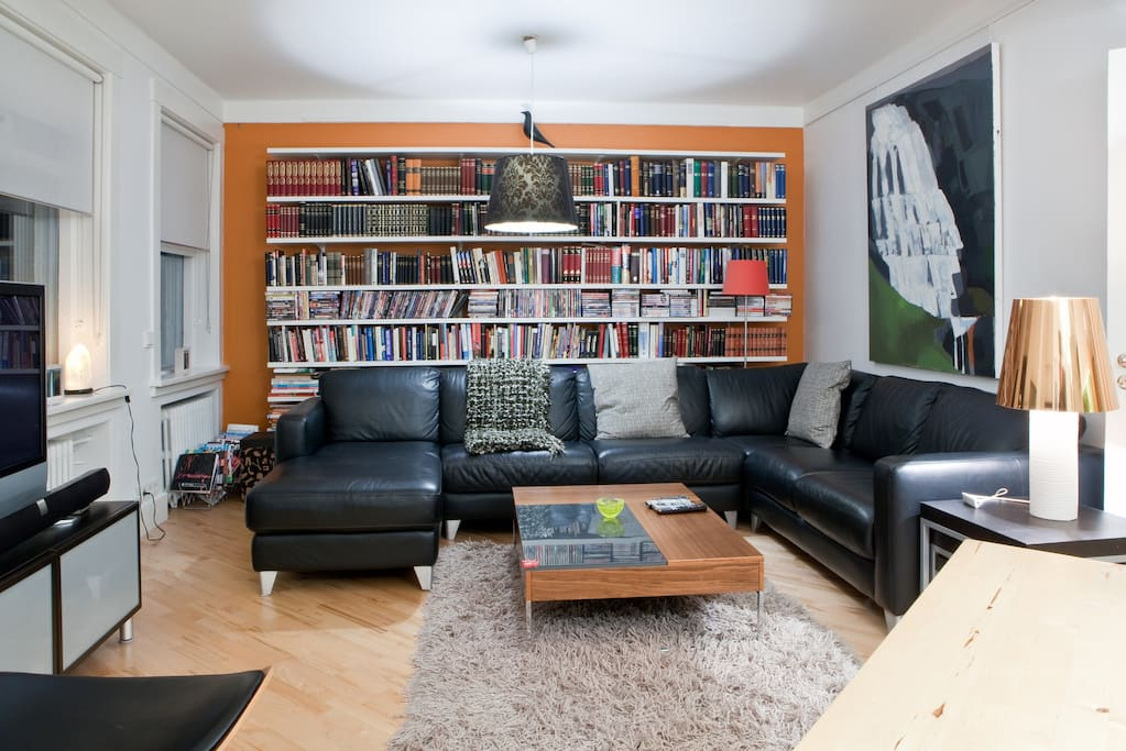 Living room. Many good international films on DVD, but most books are in Icelandic.