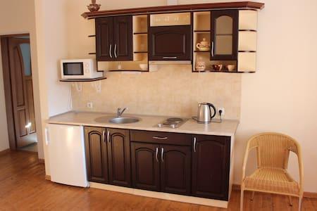 Квартира студио с отдельной спальней и балконом - Skhidnytsya - Haus