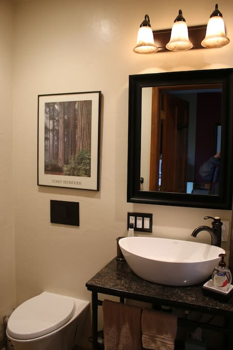 The bath has been newly remodeled.  It has a dual flush toilet, a basin sink on a granite countertop, and heated floors.