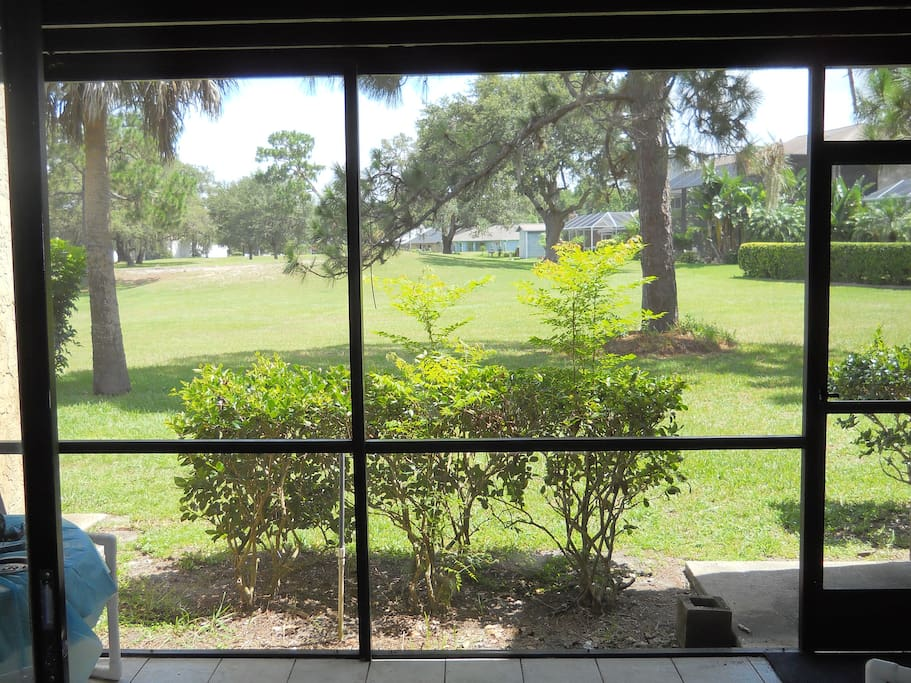 View from nice sized screened patio.