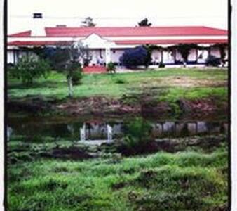 Quinta da Palmeira - Rumah