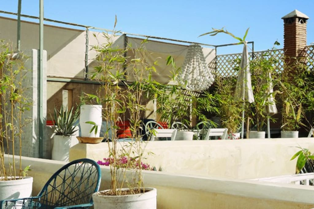 Our lovely rooftop terrace!
