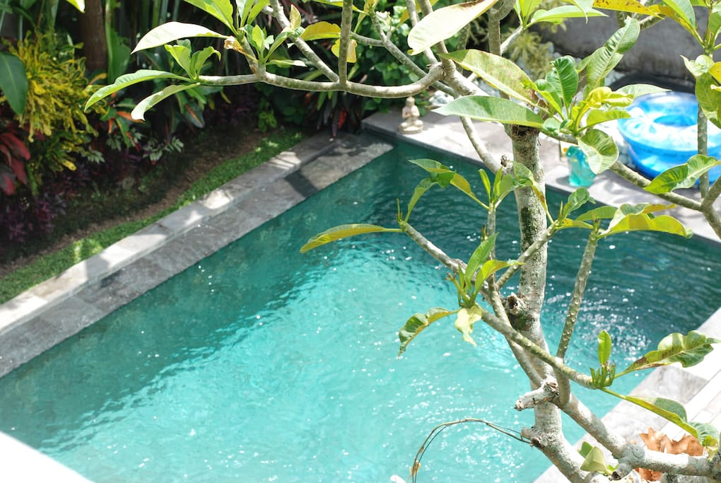 looking down from room entrance to pool. gorgeous infinity pool is lit up at night, the sound of running water is so soothing...