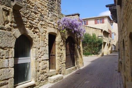 """La Petite Perle"" - Castillon-du-Gard - Huis"