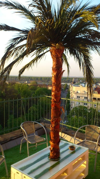 Terrace with perfect view on Kalemegdan Park / Fortress, Danube river, and historical part of city Dorcol.