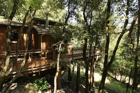 Chalet - Cabane : site insolite - Treehouse