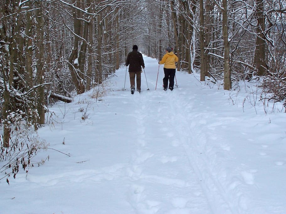 Skiing on the rail trail!