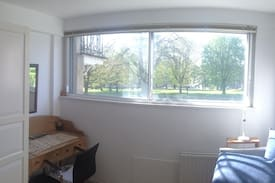 Picture of Small bright room in Clifton