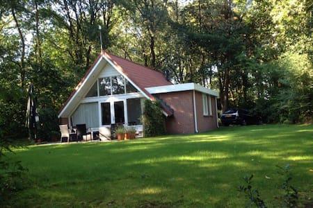 Riante Luxe Recreatiewoning in de bossen van Ommen - Casa de campo