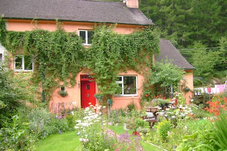 Covent Garden Forestry Cottage - Bed & Breakfast