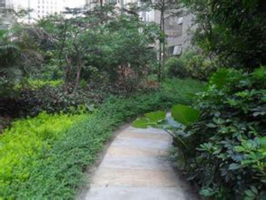 garden downstairs