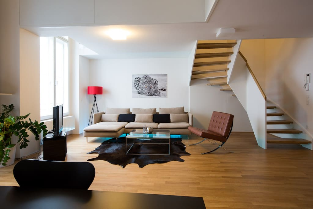 high end residence in city center appartements louer vienne. Black Bedroom Furniture Sets. Home Design Ideas