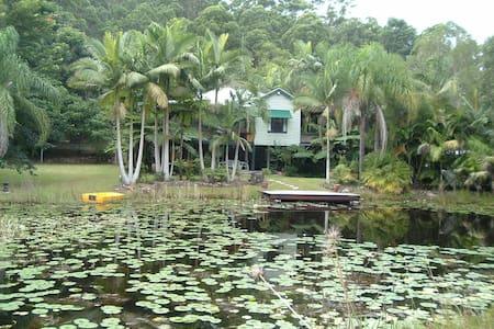 Rain Forest Retreat - Chatka
