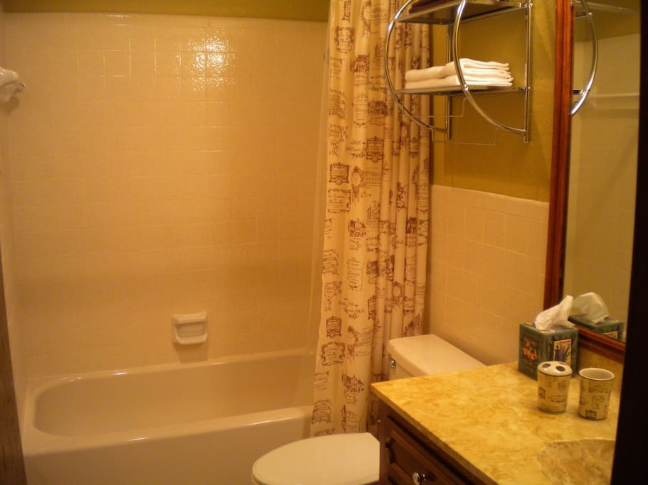 Ensuite bathroom - tub and shower