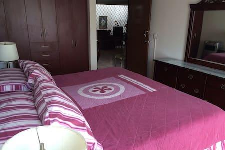 Amplia habitación céntrica - Aguascalientes - Casa