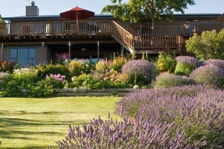 GrapeView Bed and Breakfast - Bannockburn