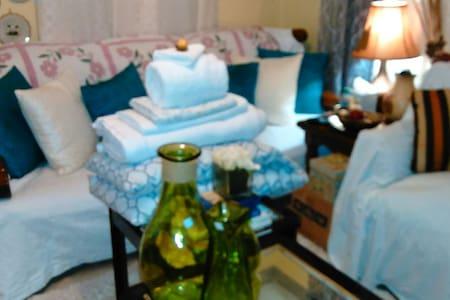 Couch Crash 40 mins to Nola CBD $25 - Casa