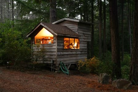 Cozy, Secluded Romantic Cabin in a Redwood Forest - Kisház