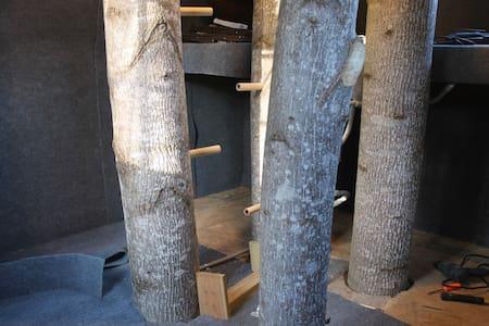 Luke's Treehouse - Mathias - Treehouse
