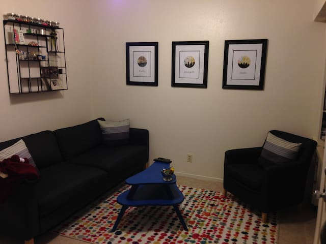 One Bedroom Apartment For SXSW 2016 Apartments For Rent